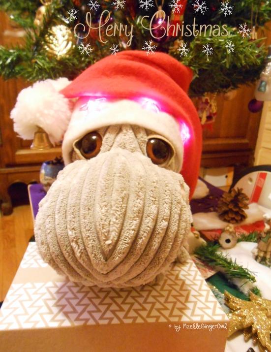 merry_christmas_birchbox