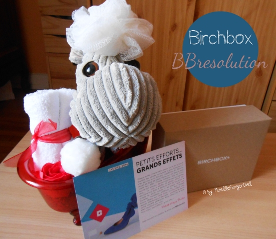 birchbox_bbresolution