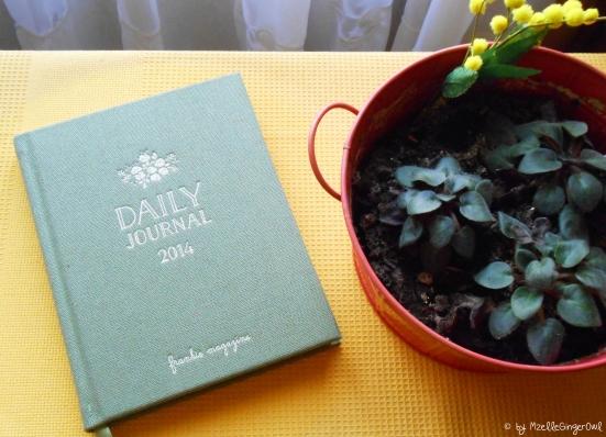 daily_journal_frankie